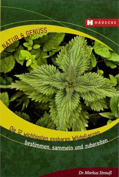 Die 12 wichtigsten essbaren Wildpflanzen